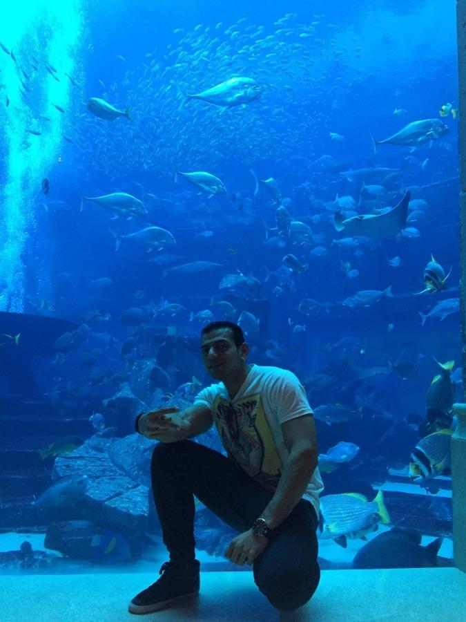 Azeem, 33, Abu Dhabi, United Arab Emirates