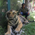 Raj Verma, 35, Thane, India
