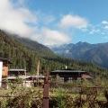 Kanchan, 65, Thimphu, Bhutan