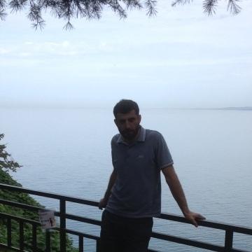 Giorgi Miqaberidze, 30, Tel Aviv, Israel