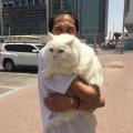 Inst/tw: rheayandhie, 30, Abu Dhabi, United Arab Emirates