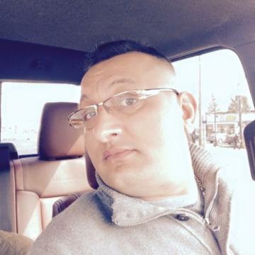 Steve, 35, New York, United States