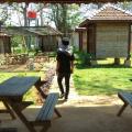 Qnonk cuy, 30, Jepara, Indonesia