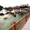 Hayat79, 24, George Town, Malaysia