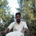 Mvishnar, 31, Shimla, India