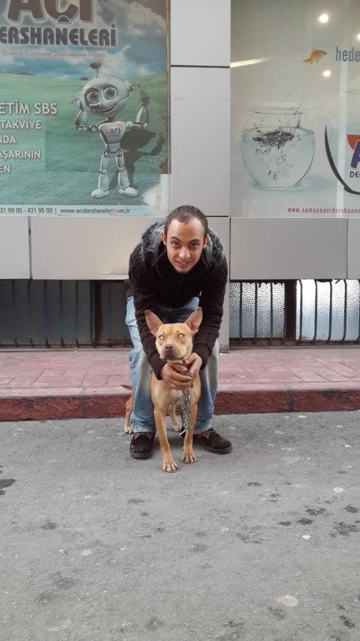yunus yzc, 24, Samsun, Turkey