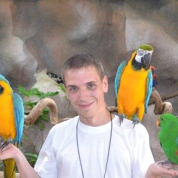 Ivan Muntyan, 29, Vladivostok, Russian Federation