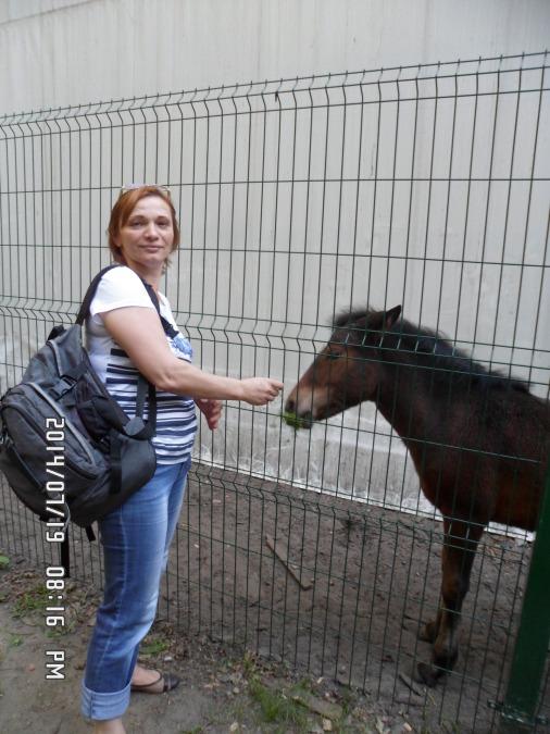 Елена Зейналова, 51, Moskovskiy, Russian Federation