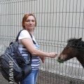 Елена Зейналова, 52, Moskovskiy, Russian Federation